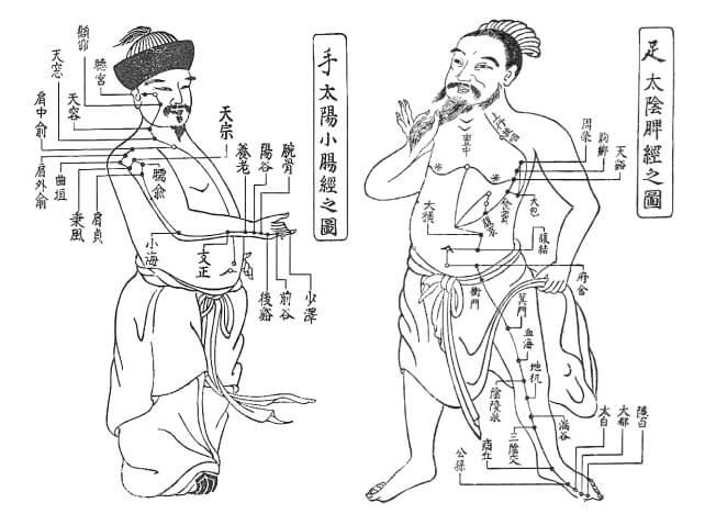経絡イラスト